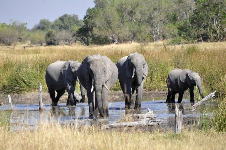 Tourisme en Afrique, 2 immanquables à découvrir