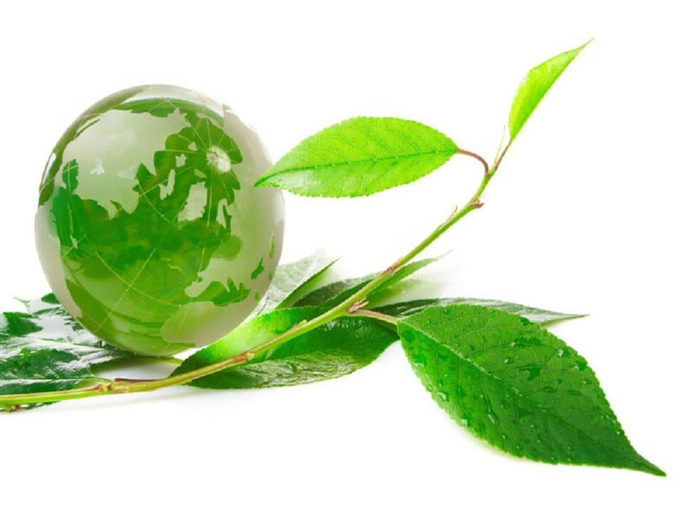 Des équipements surs avec Eco-environnement, le spécialiste des énergies renouvelables