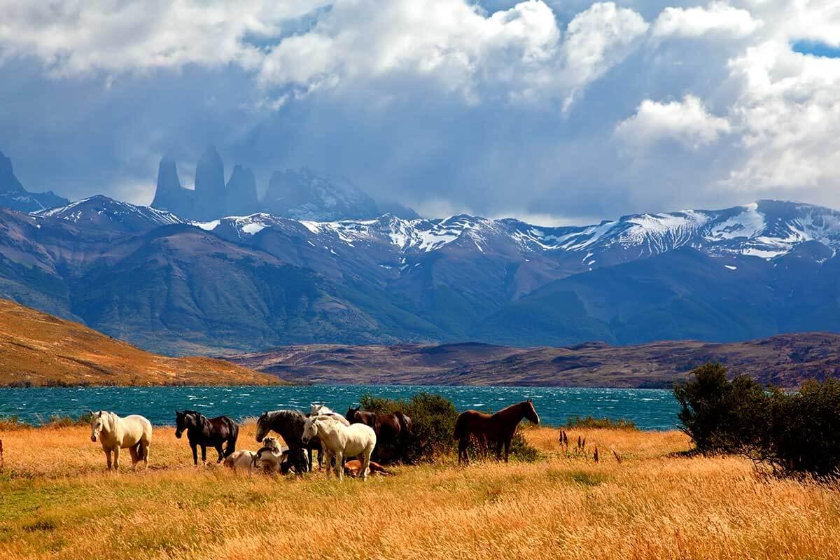 Zoom sur les endroits spectaculaires de l'Argentine