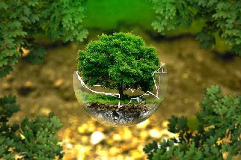 Un moyen facile et efficace pour se chauffer avec Eco environnement.