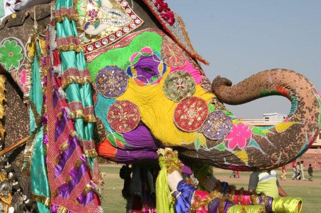 Quelle est la meilleure période pour explorer l'Inde ?