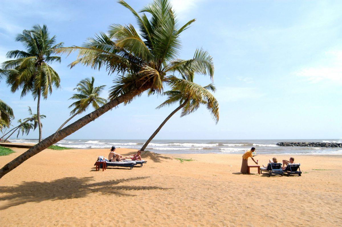 Séjour en Asie du Sud, les choses à voir et à faire au Sri Lanka