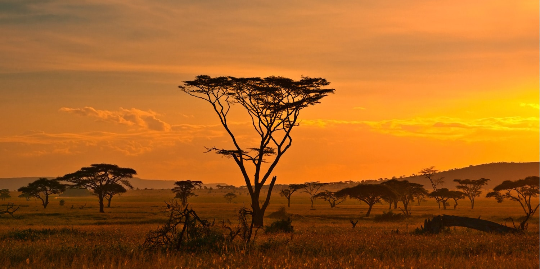 Les aires protégées propices à la randonnée en Afrique Australe
