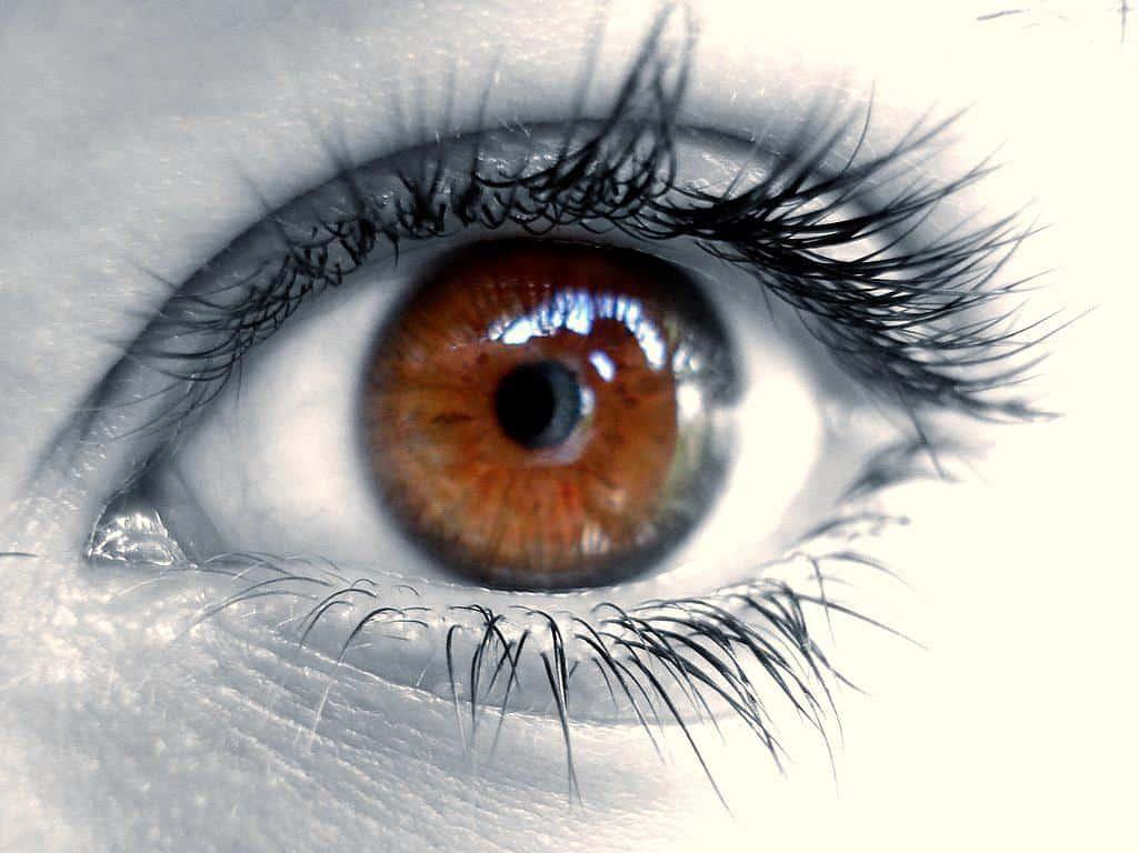 Les produits d'entretien des lentilles
