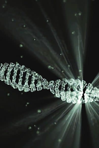 Génotype et phénotype: définitions, différence, explications !