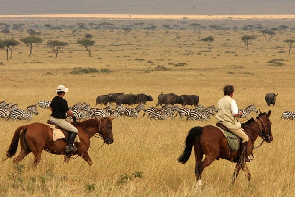 Les points forts d'un séjour équestre au Kenya