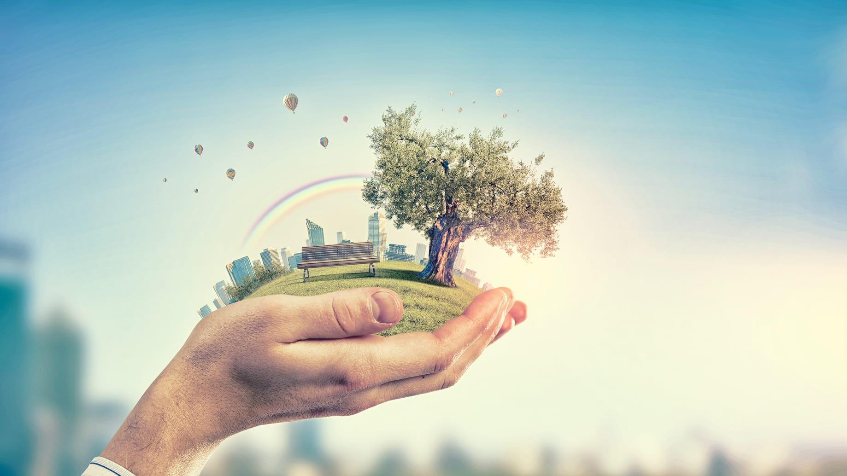 Eco-environnement : une entreprise professionnelle qui se base sur les énergies renouvelables.